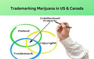 Trademarking marijuana